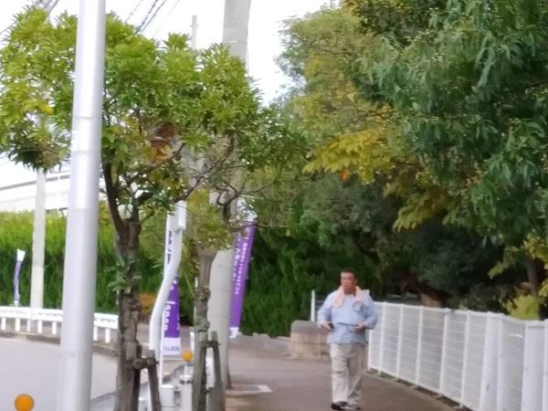 2019.10.22 リレーフォーライフジャパン2019泉州かいづか準備でのぼりを設置